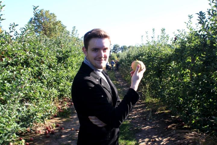 applepicking12